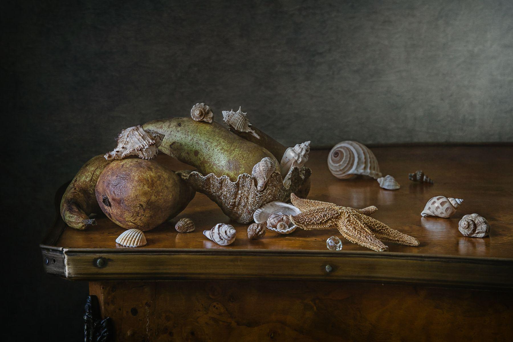 Груши в ракушках натюрморт груша ракушки