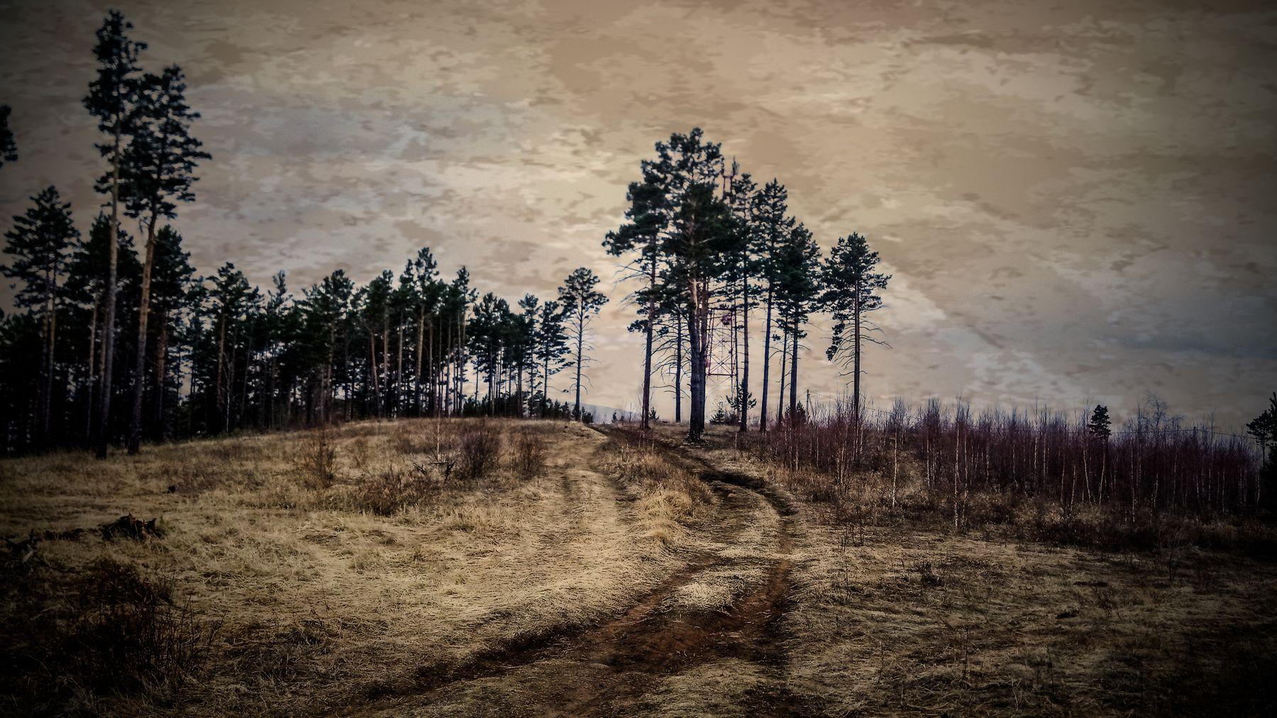 *** весна сопка сосны лес небо Забайкалье
