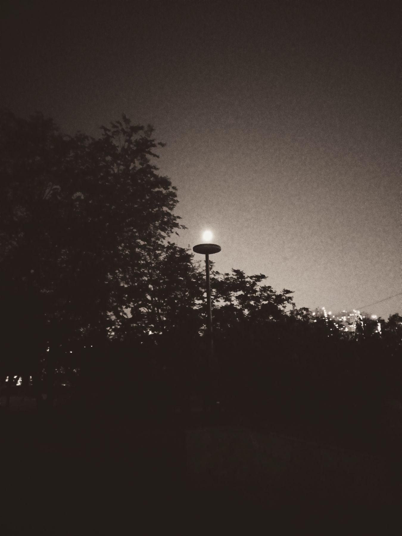 Лунный фонарь Город ночной город фонарь луна на блюде факел свечка освещение луной лунный сепия чёрно-белое фото свет луны и тьма