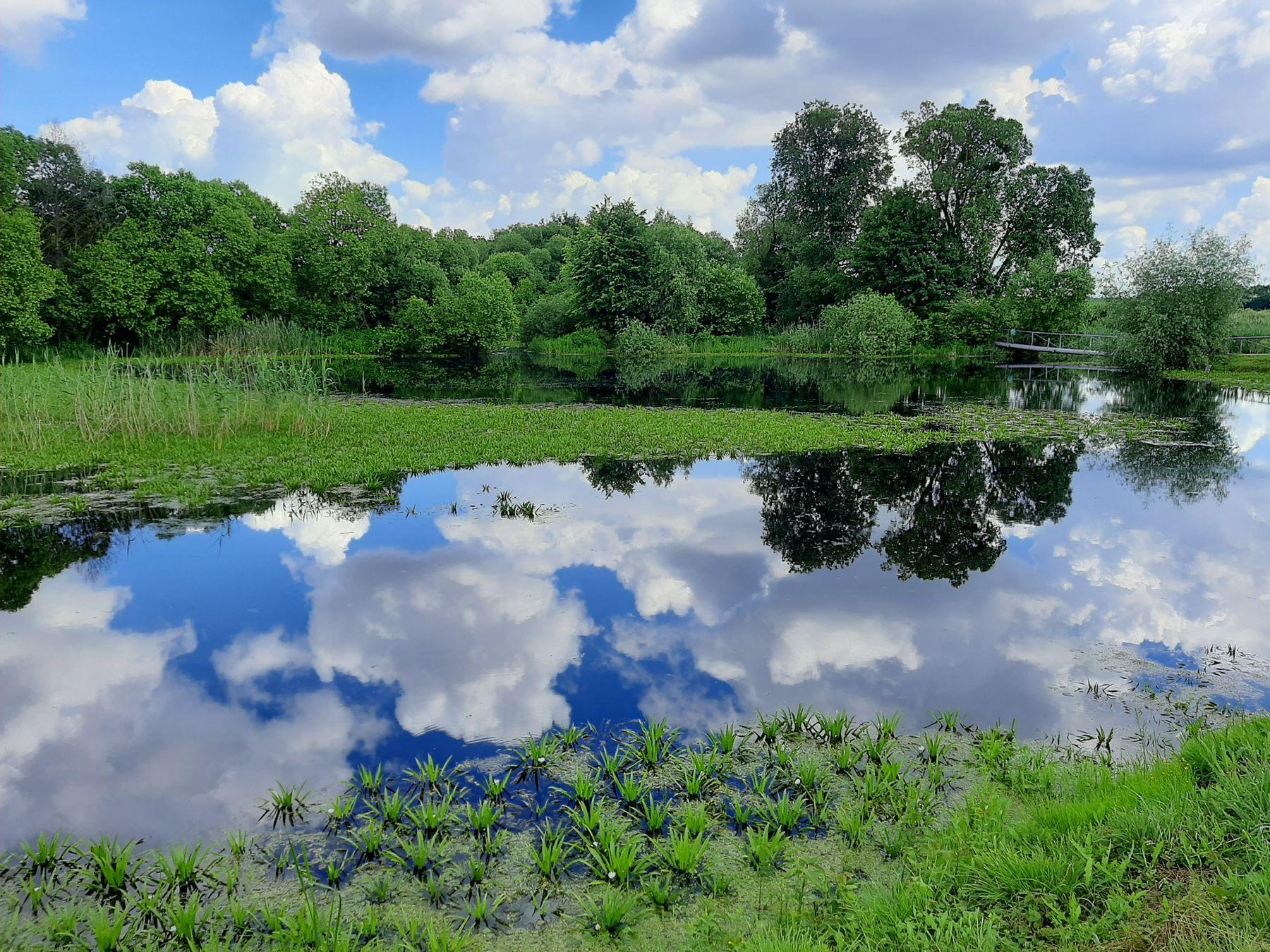 Можно нырнуть прямо в облака пейзаж красота облака небеса шедевр