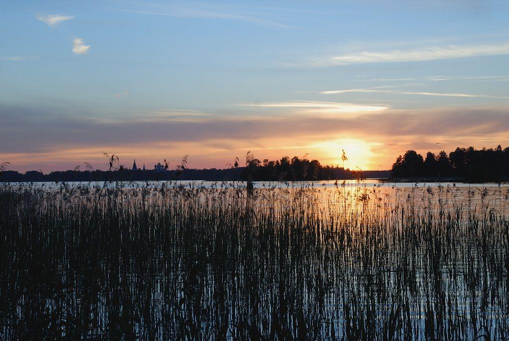 *** закат осока озеро