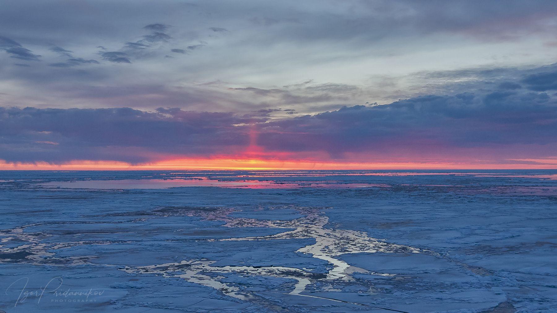 Рассвет в Арктике