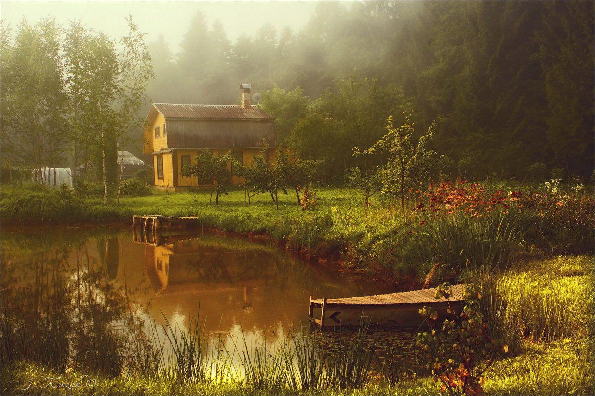 Мостики. утро туман деревня пейзаж пруд мостик