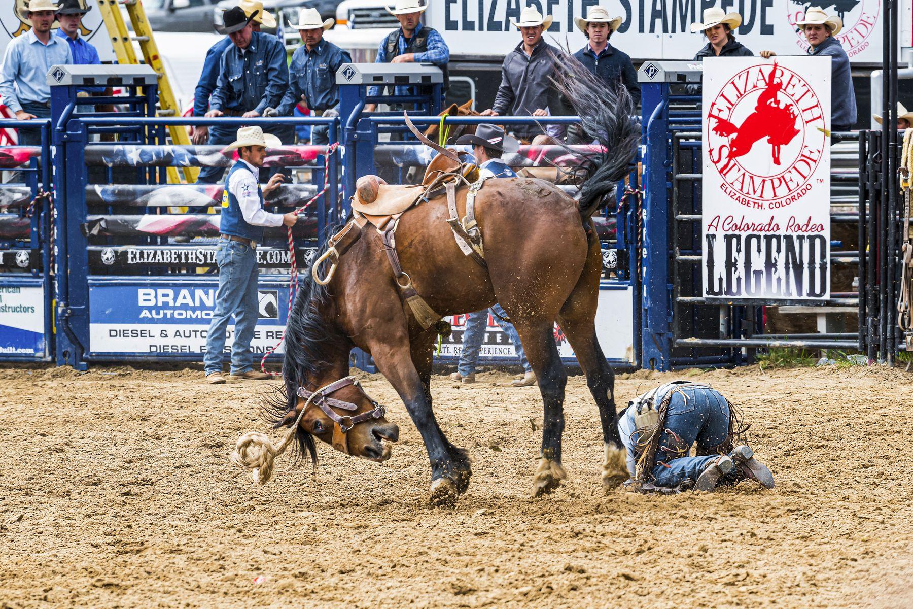 Не вели казнить, а вели помиловать ковбой родео конь лошадь