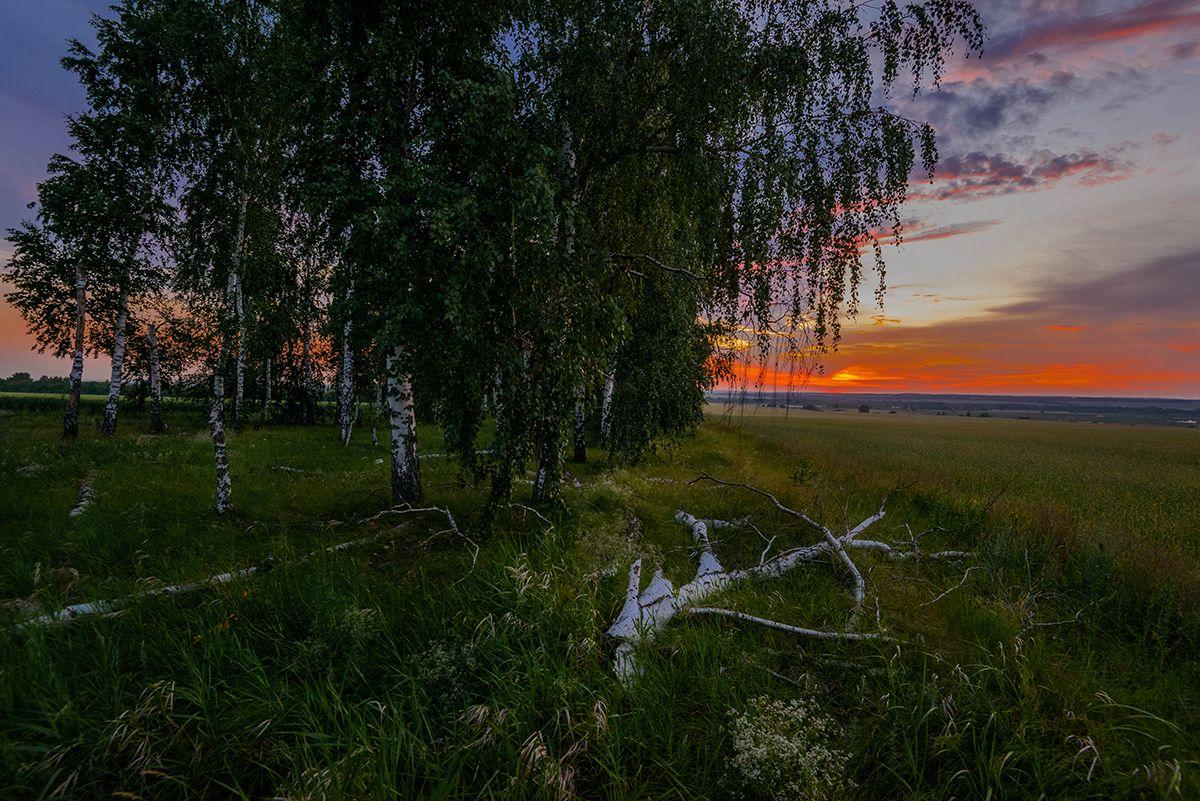 Закат... Лето июнь закат