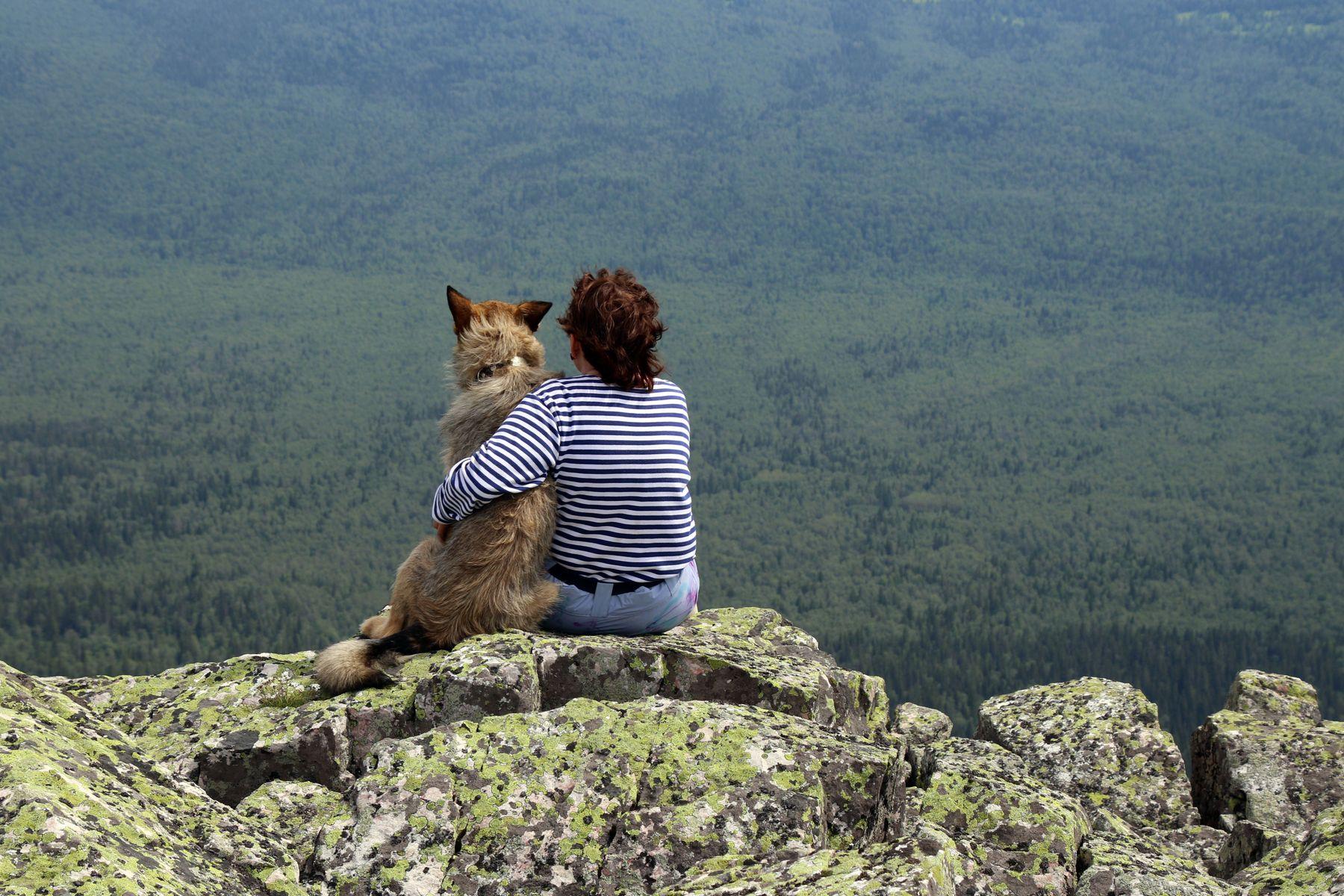 Ну вот, сбылась и твоя мечта... горы курумник лето собака