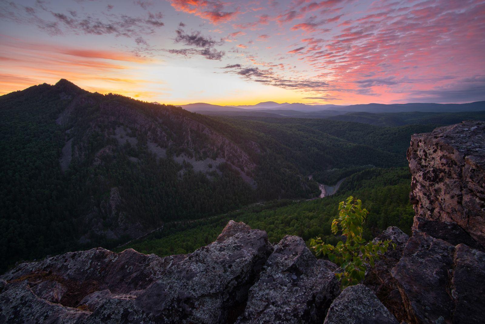 Утренний гламур пейзаж рассвет горы природа деревья