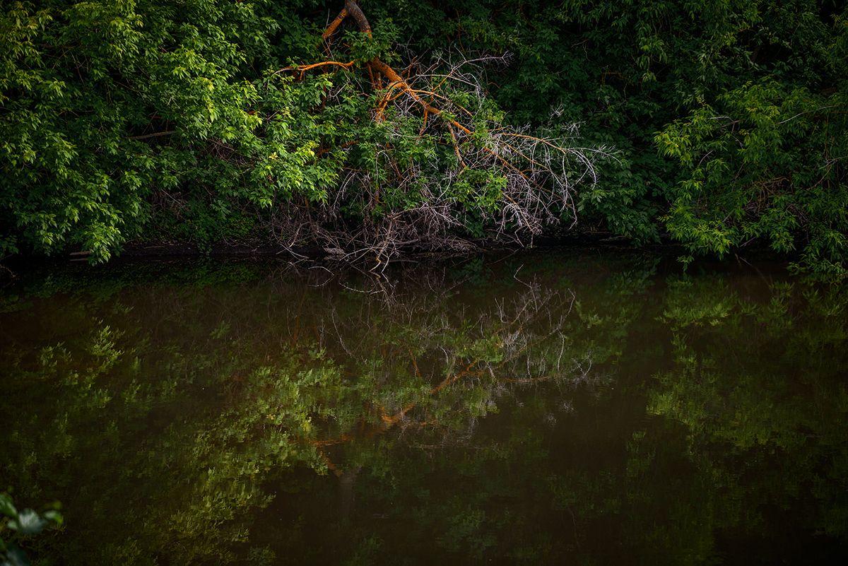 Отражение... Лето июнь Свияга