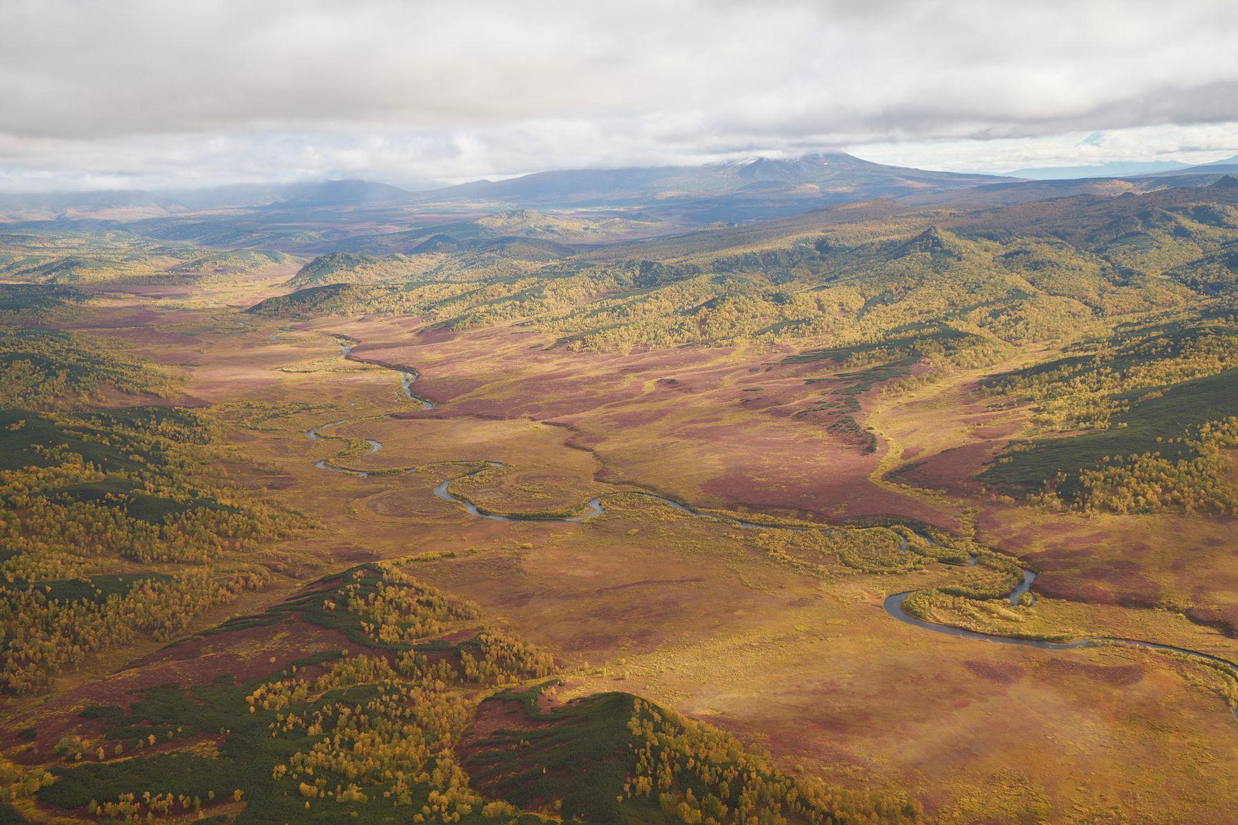 Долина реки Левая Жупанова Камчатка Осень Жупаново ЛеваяЖупаново Долина SAL1635Z