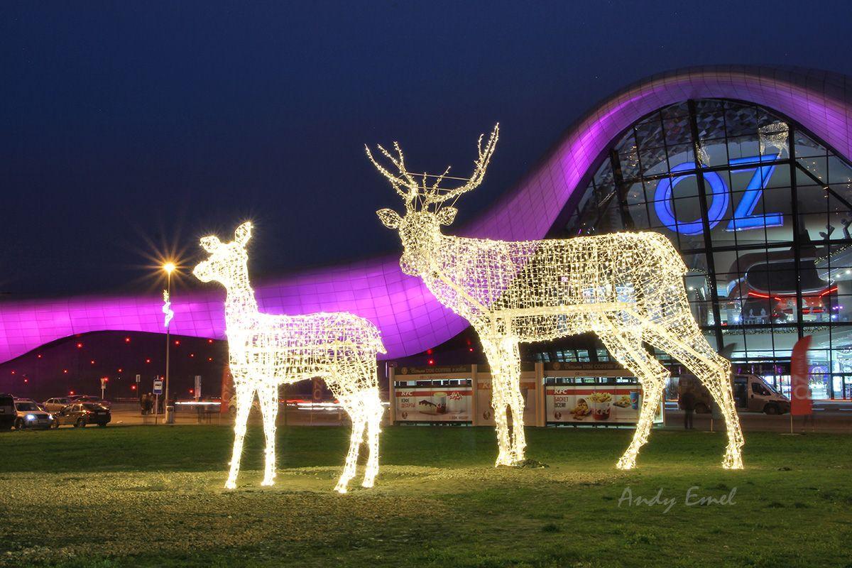 новогодняя ночная Краснодар Oz Mall Олени светодиодная фигуры