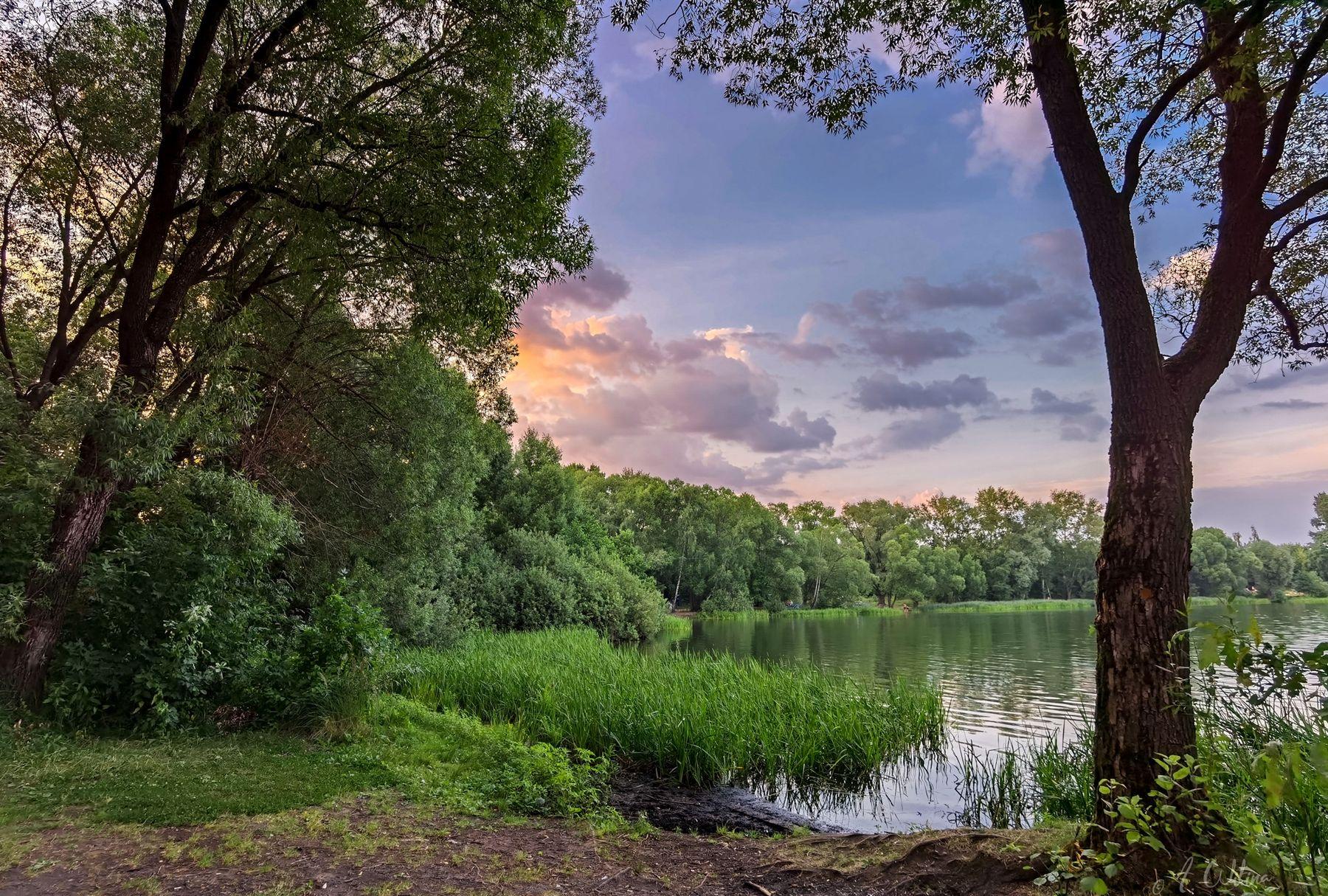 *** озеро облака берег лес закат