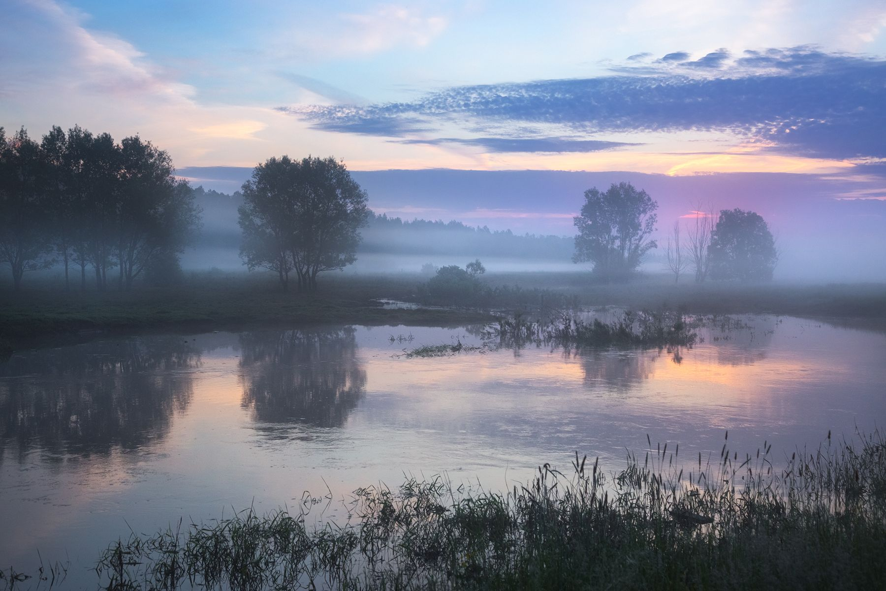 Утро на Шерне природа туман лето рассвет