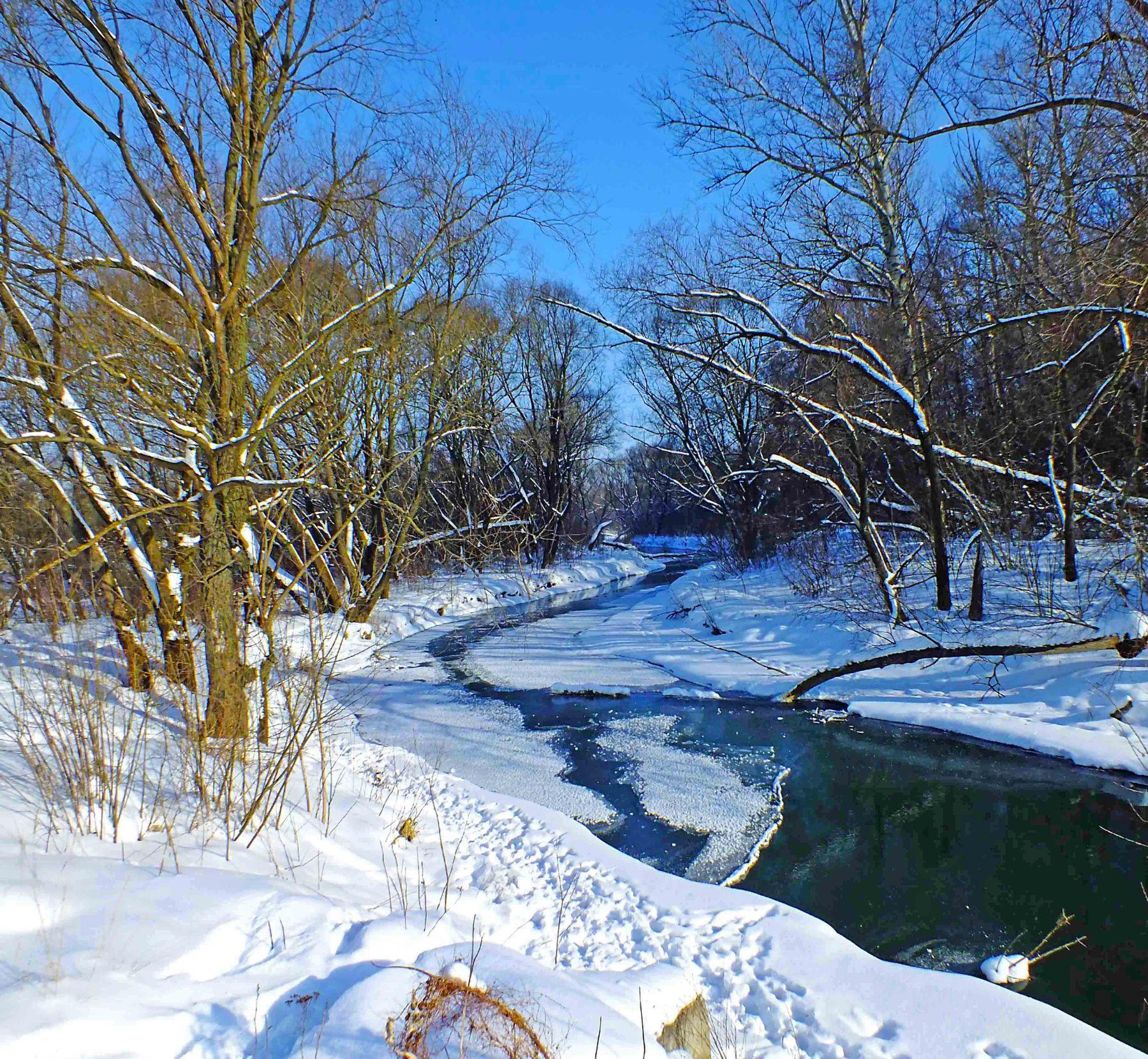 ***** Тулица февраль речка зима снег