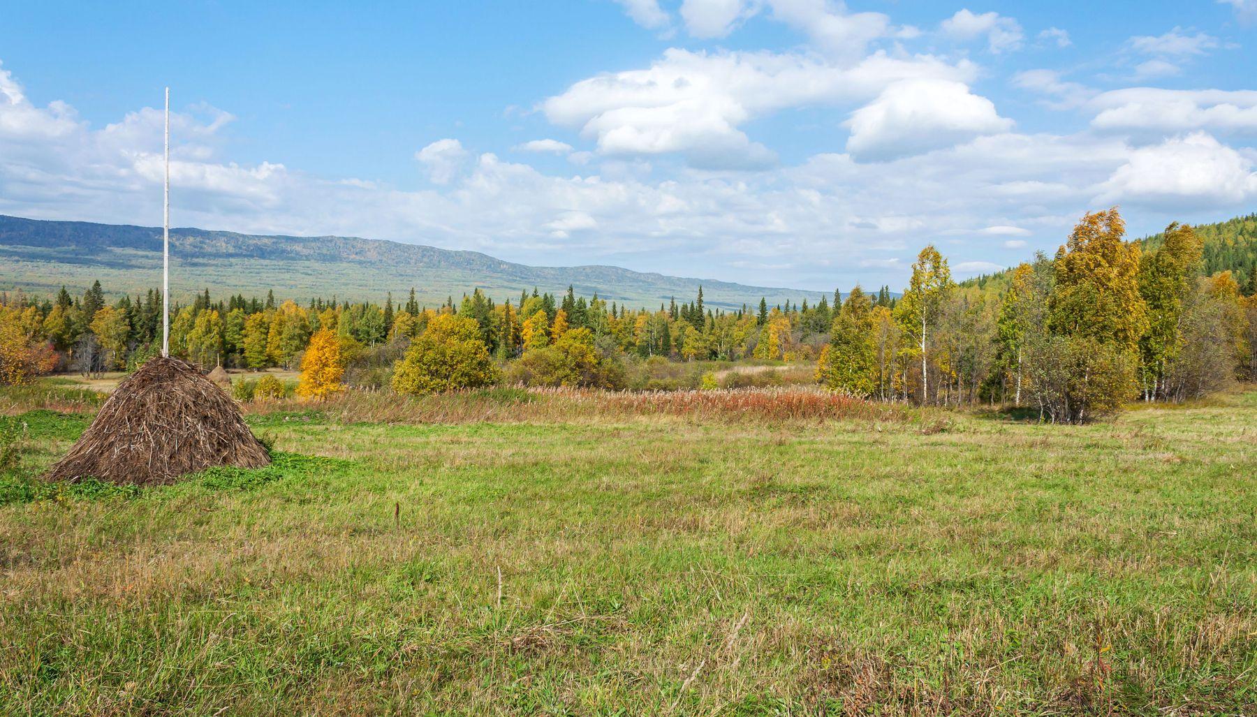 Осенний день. Южный Урал Миасс природа осень