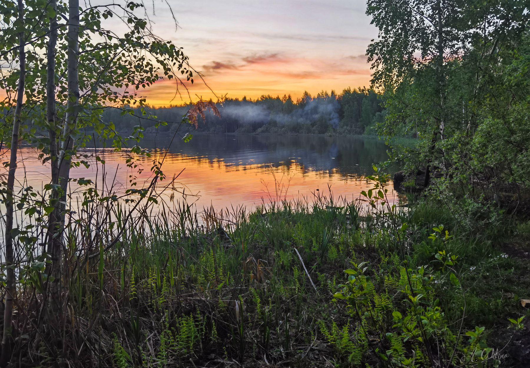 *** озеро вечер костер дым закат березы лес