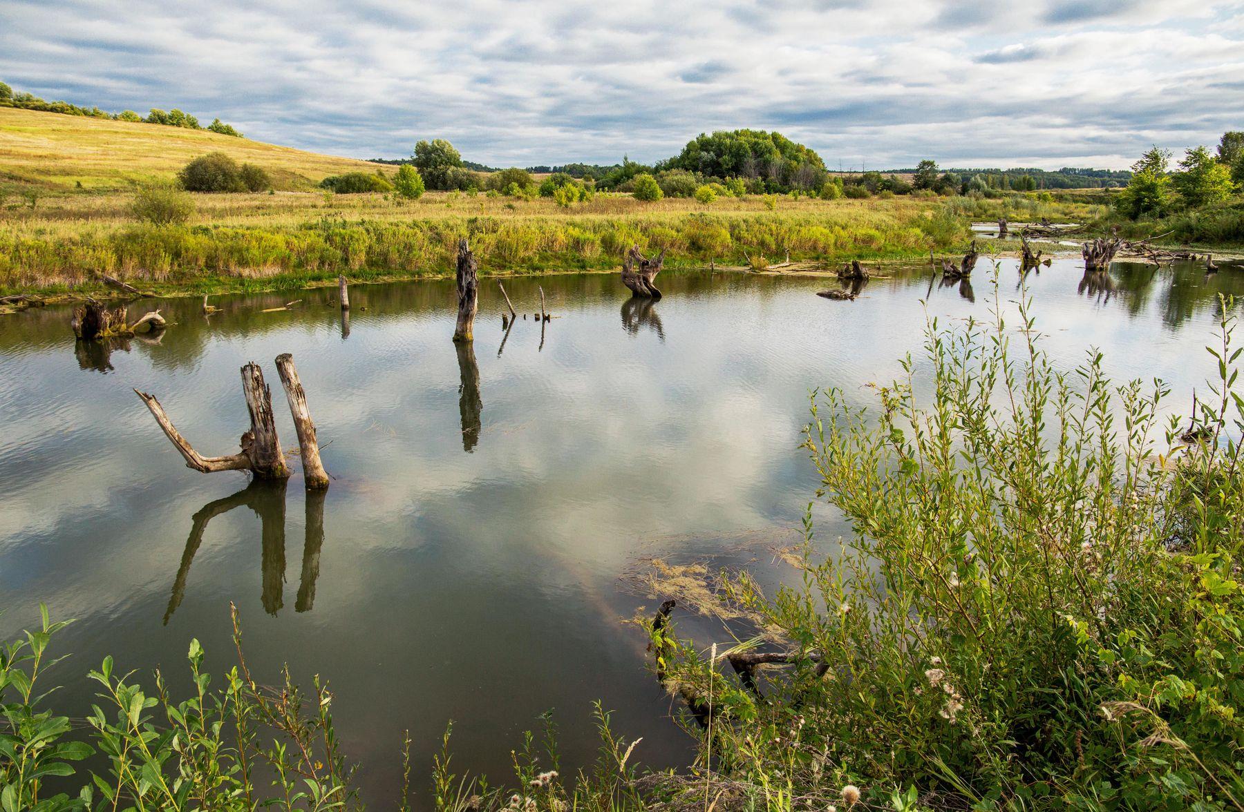 озеро Морквашинское ,Татарстан природа пейзаж осень татарстан озеро морквашинское
