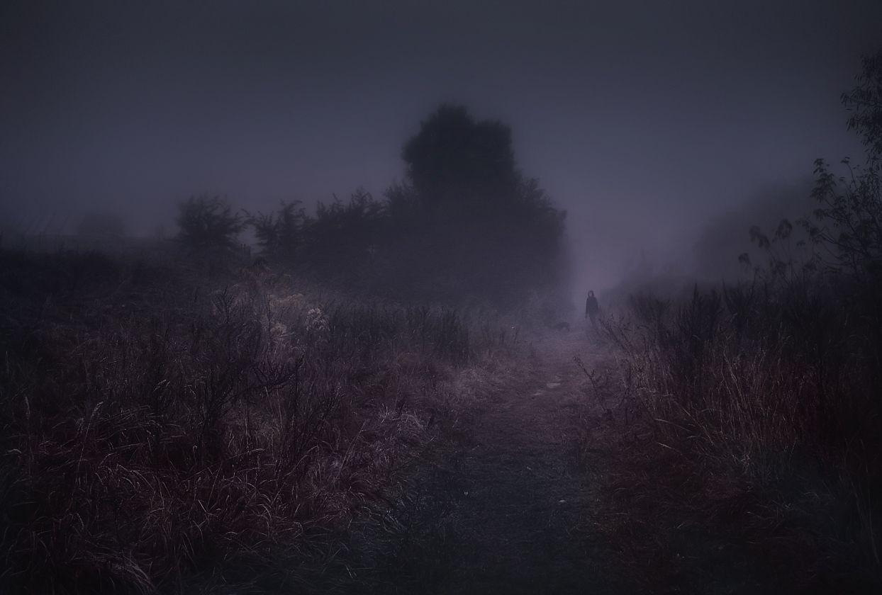 ***Выходящая из тумана.