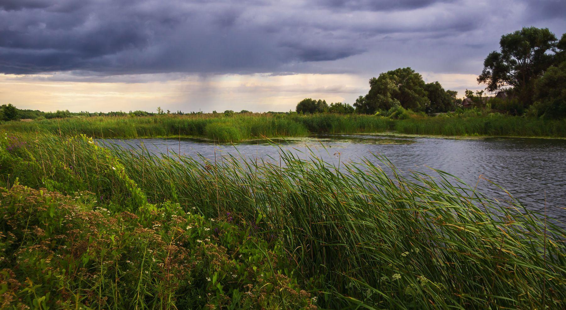 Вечерняя туча пейзаж природа вечер облака лето река Усманка Боровое Воронеж туча