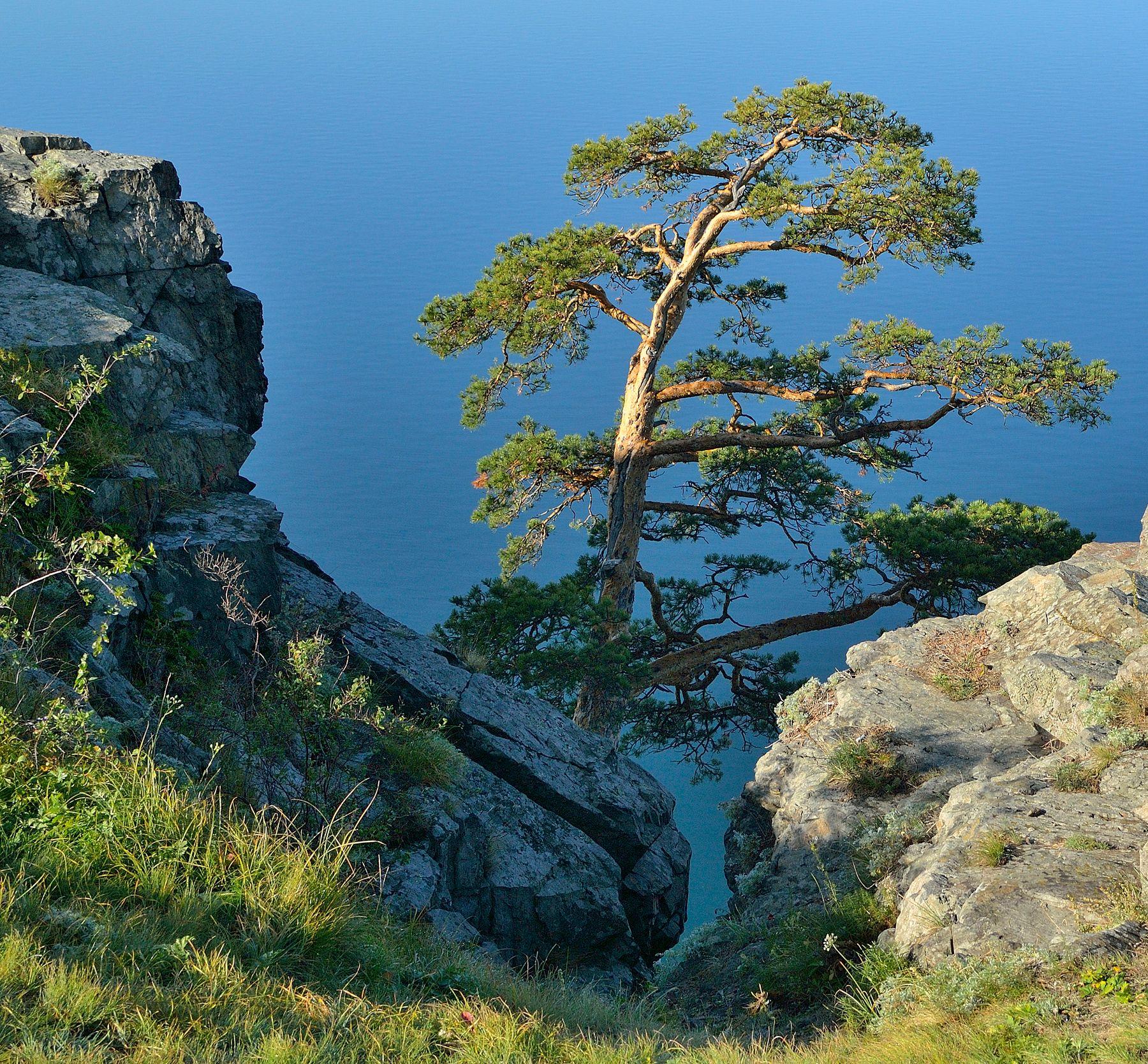 Скала на озере Тургояк.  Южный Урал.