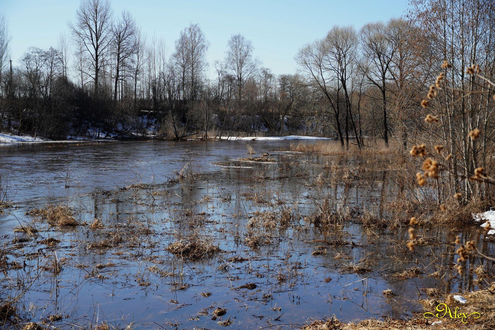 Река в марте река весна март утро природа пейзаж