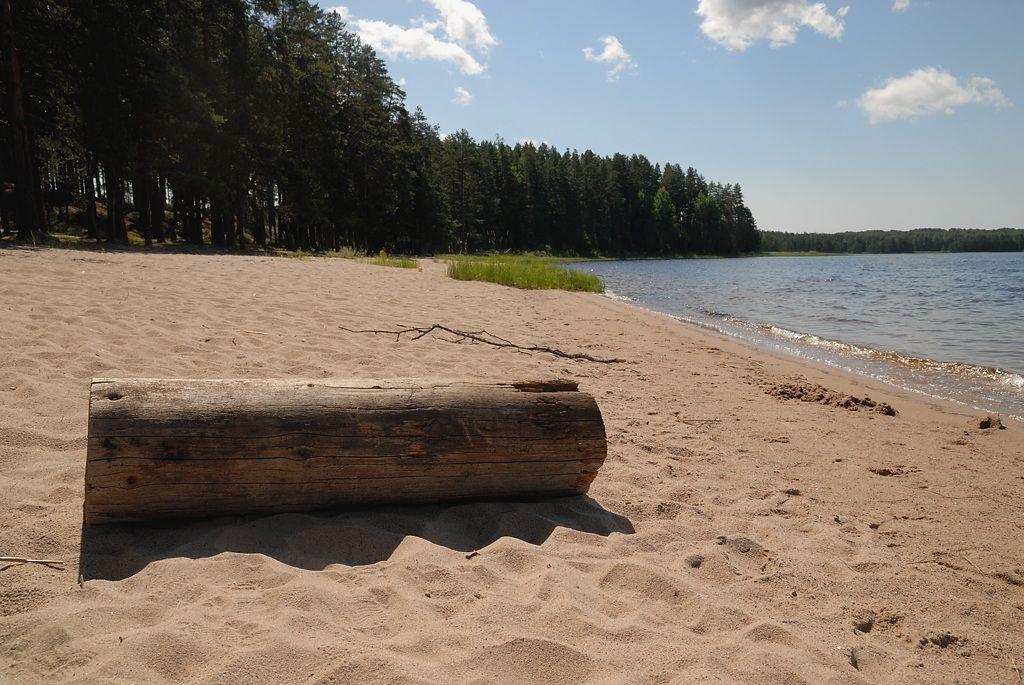 *** пляж озеро бревно песок лес
