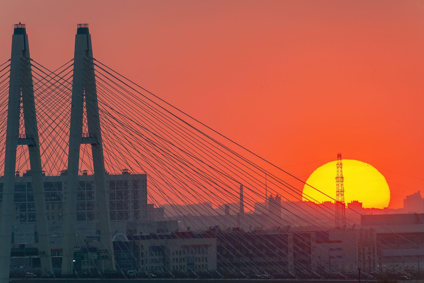 Вантовый мост на закате санкт-петербург вантовый мост солнце лето закат