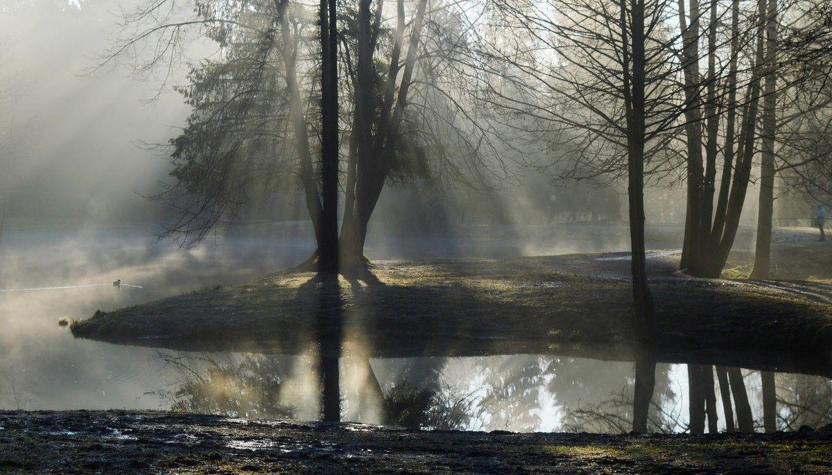 Утро у пруда.....