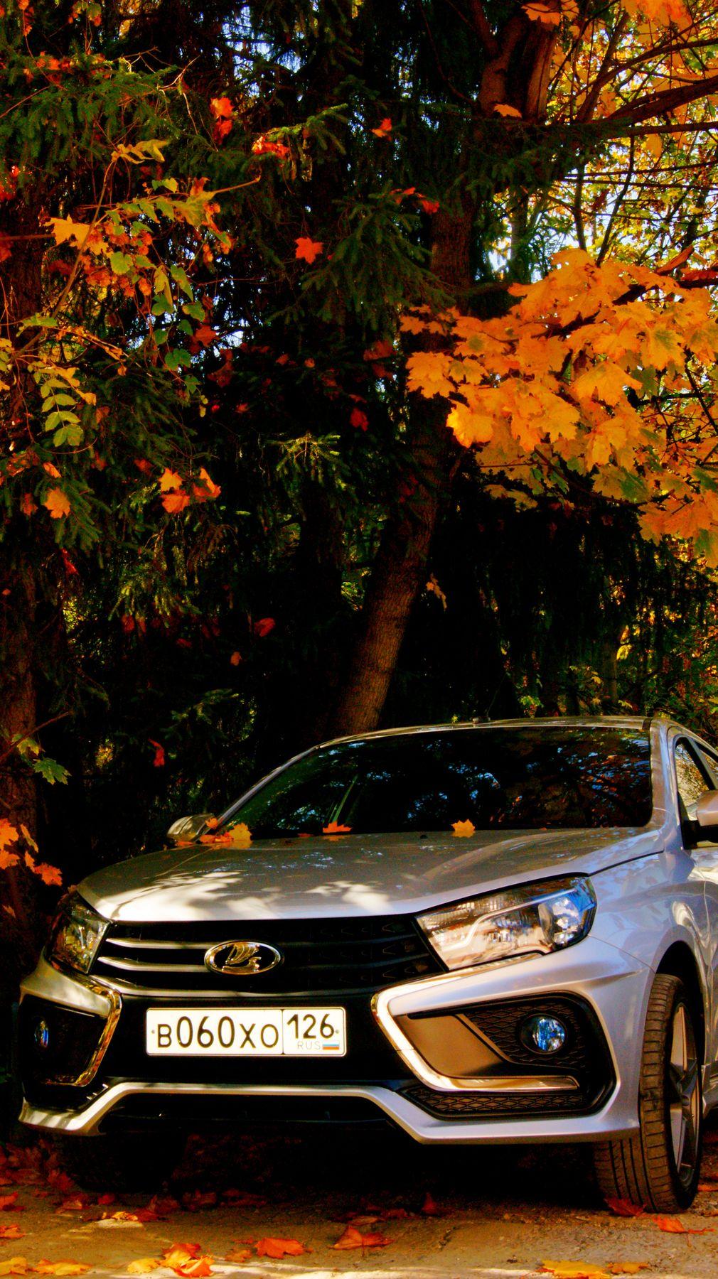 Ноябрьский  вид авто... осень листва авто у дома