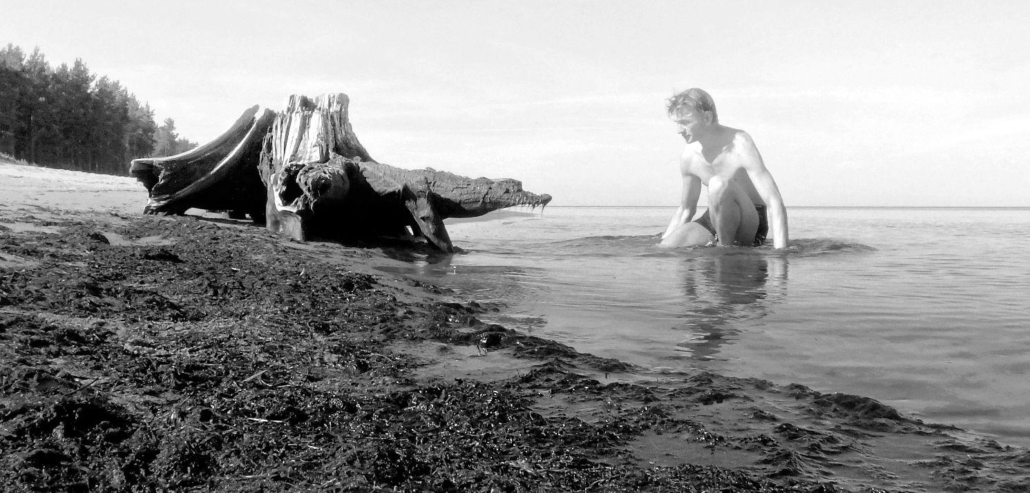 *** я .лето.пень солнце море .Рижский залив 09.08.2017 10 24