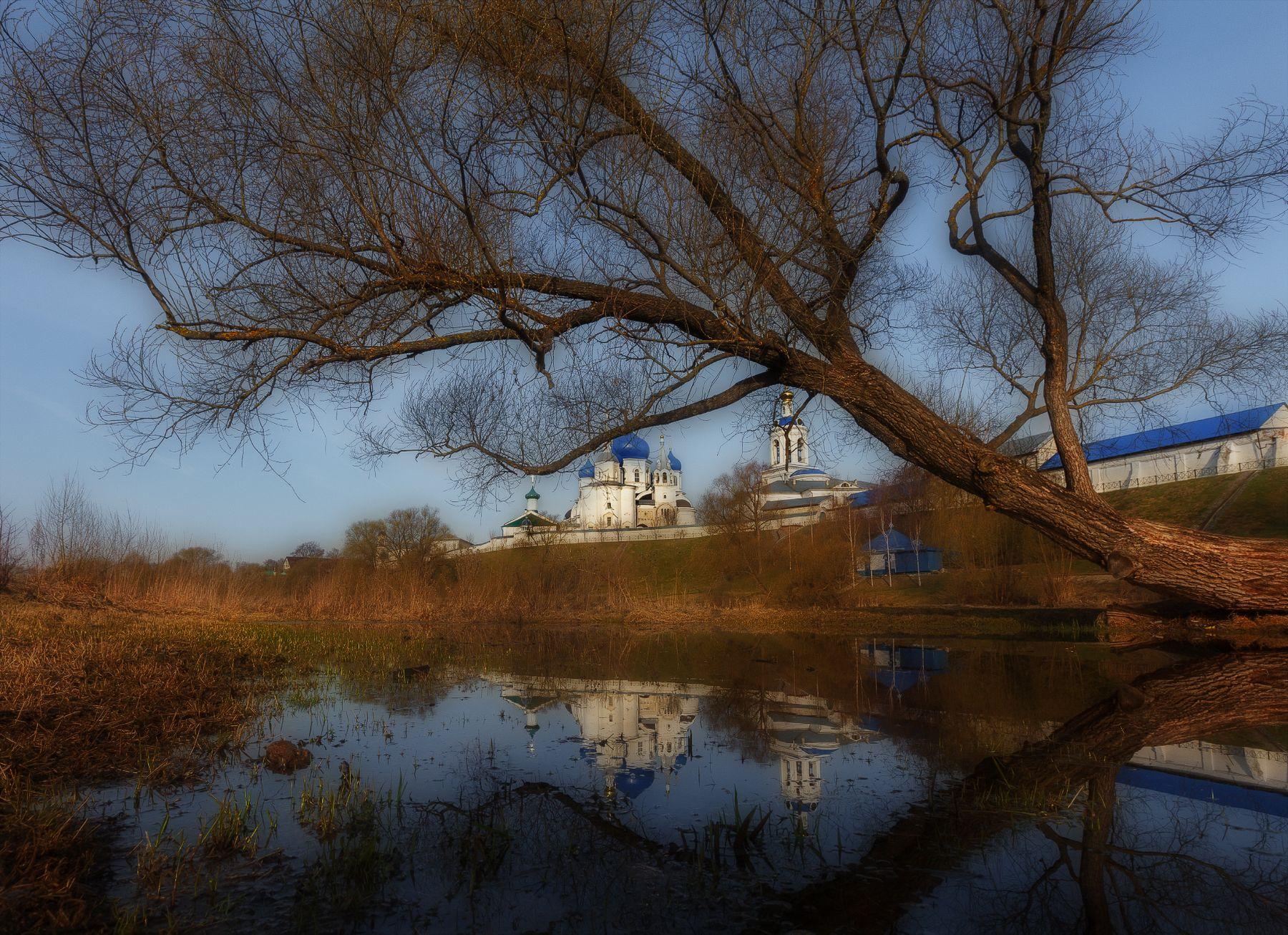 Монастырский пруд в Боголюбово Утро весна Владимирская область Боголюбово пруд дерево Боголюбский монастырь Рождества Богородицы
