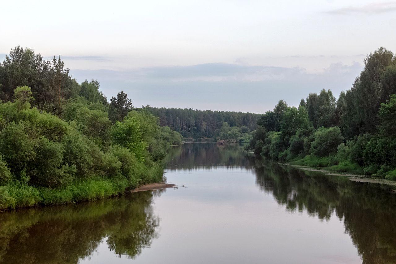 река Нея нея река лето природа пейзаж вид отдых путешествие гридкино