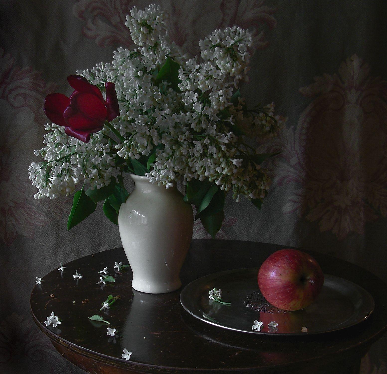С красным тюльпаном