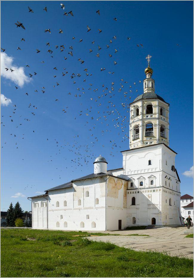 Над колокольней монастырь птицы