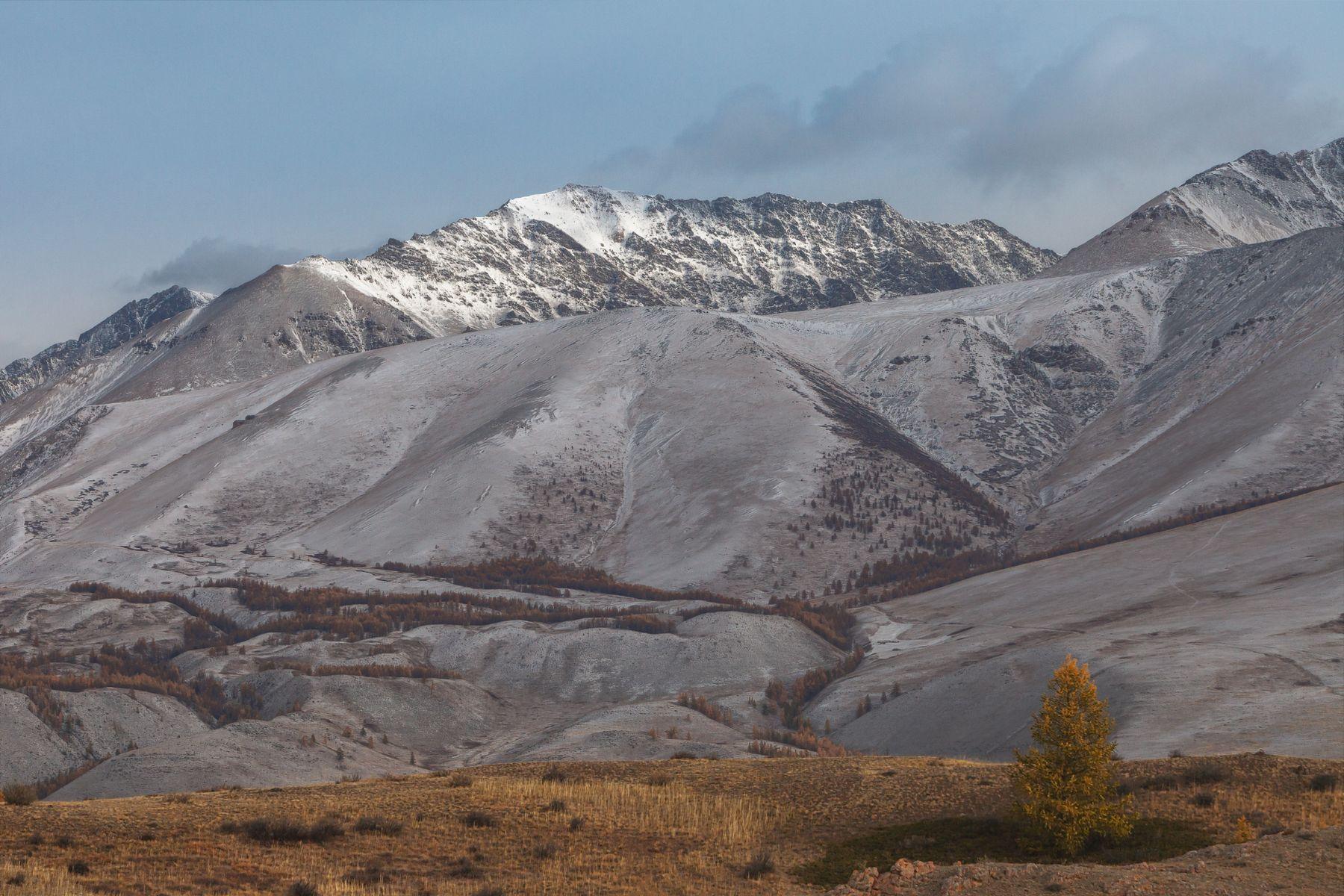 Солнца луч скользнул по вершинам... Алтай горный горы осень Курайская степь
