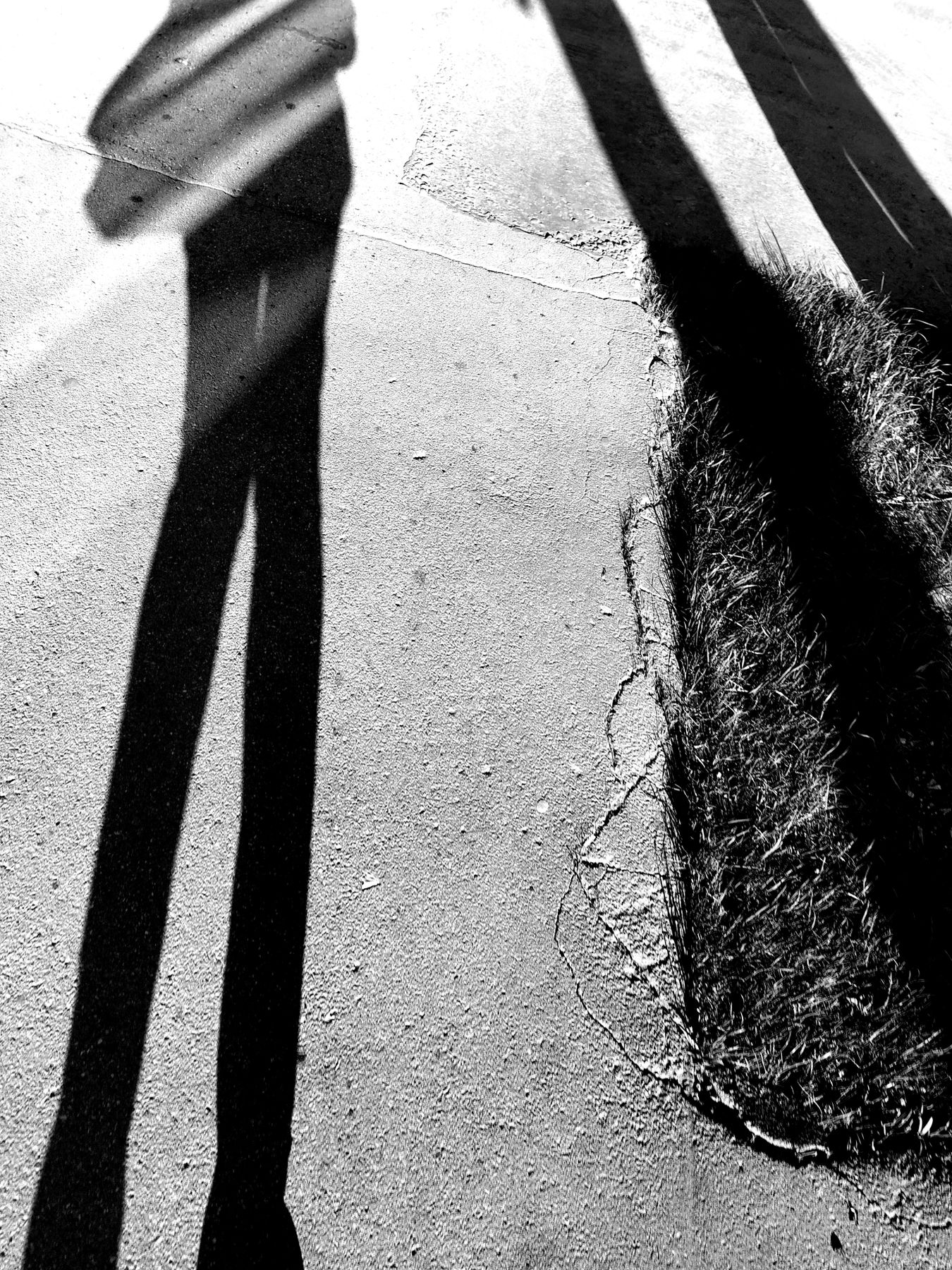 * Тени уличные тени улица уличная графика чб