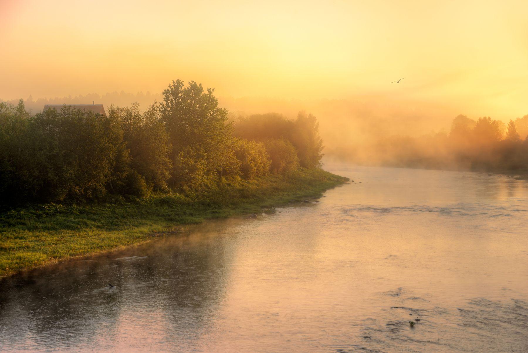 туманное утро на Свири...