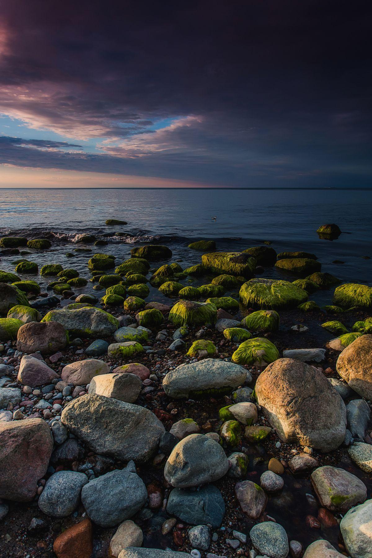 На каменистом берегу Природа пейзаж море берег