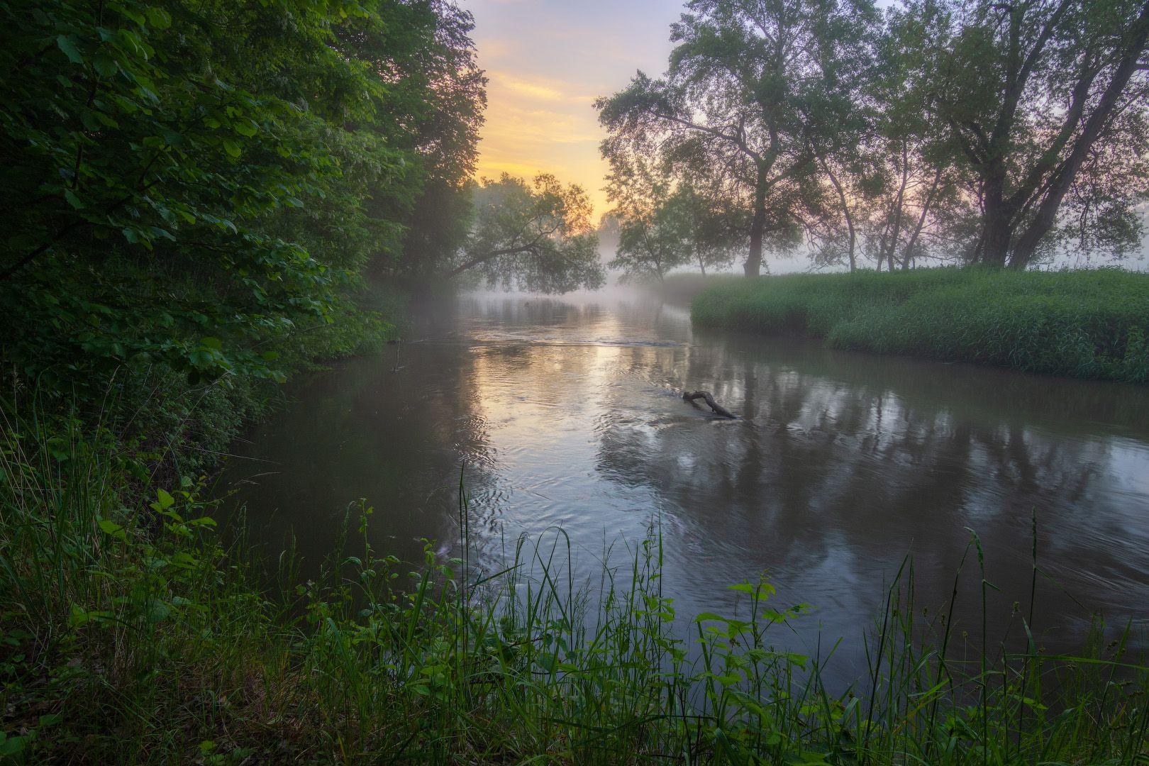 Раннее утро на реке рассвет туман утро