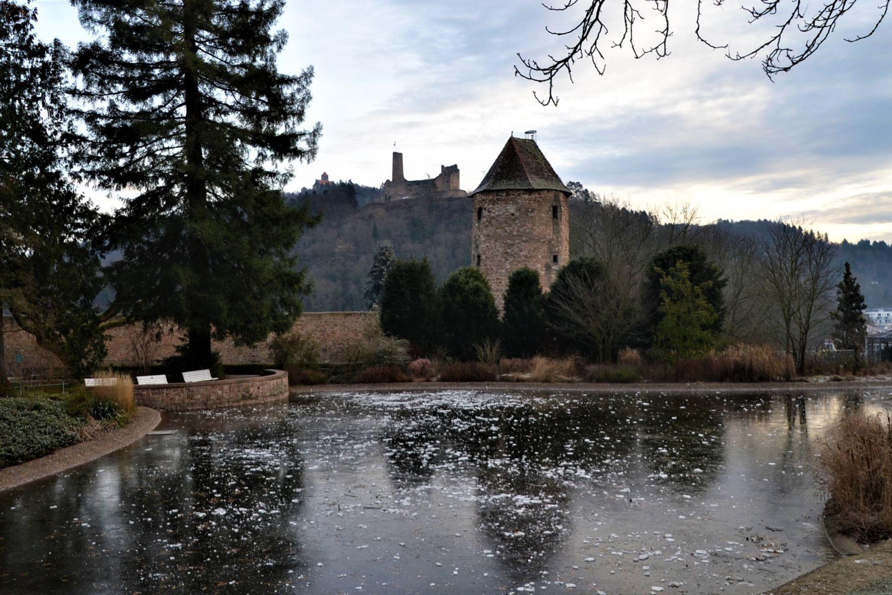 Зимний парк январь мороз