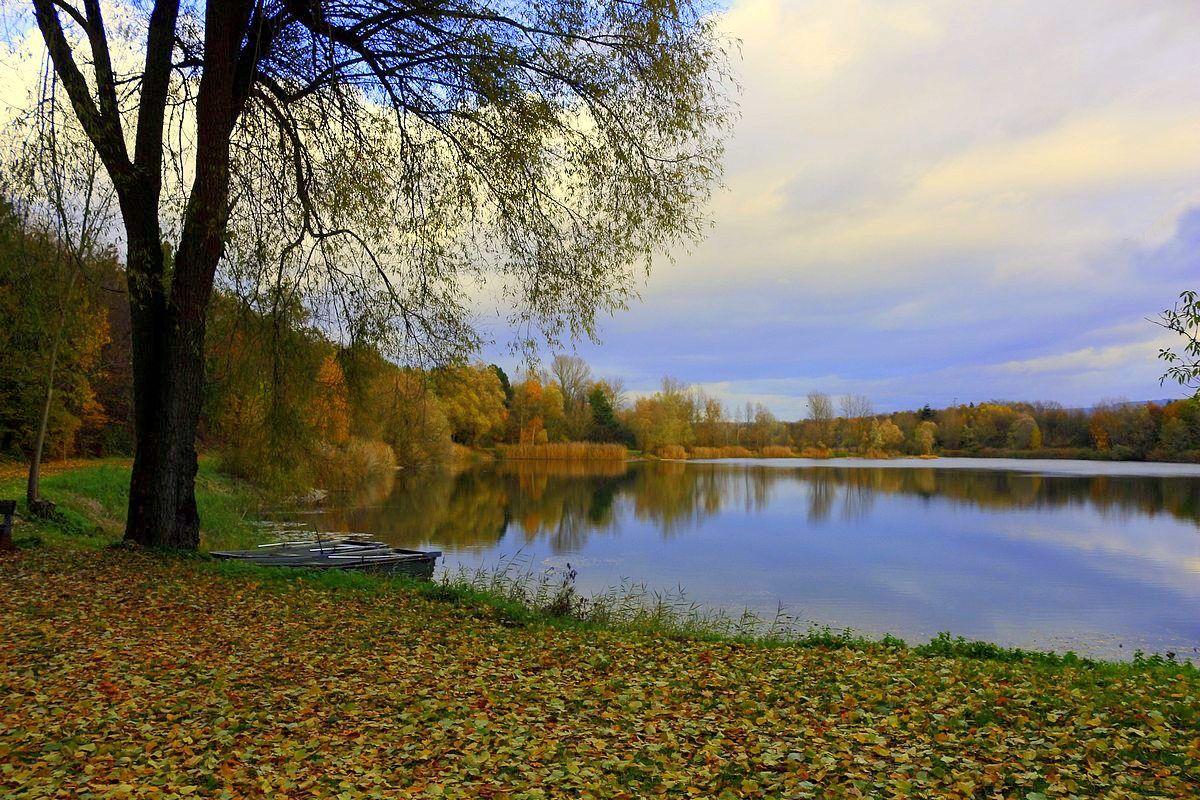 Осенний вечер Осень озеро листва