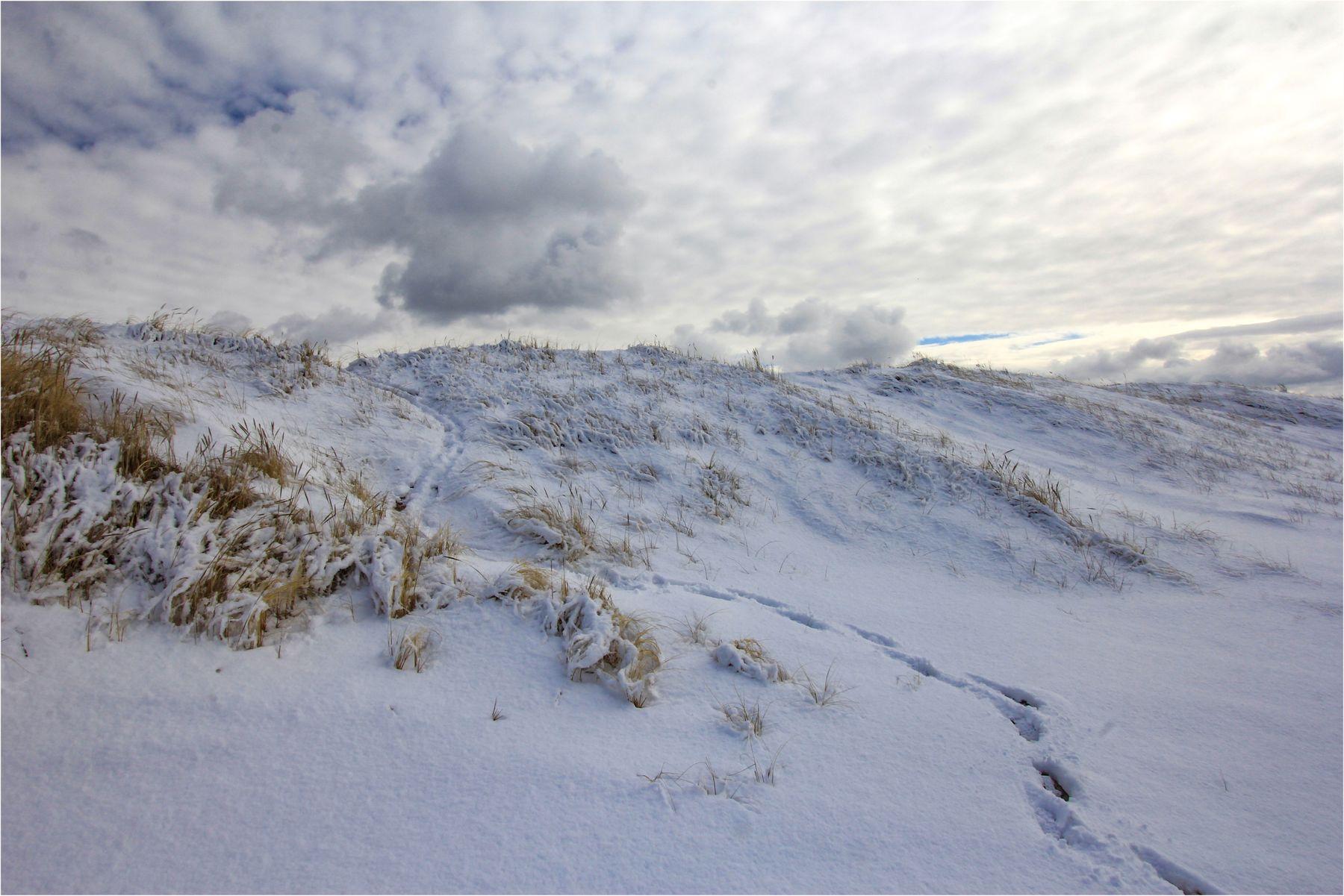 Зима проходила неровно. зима пляж