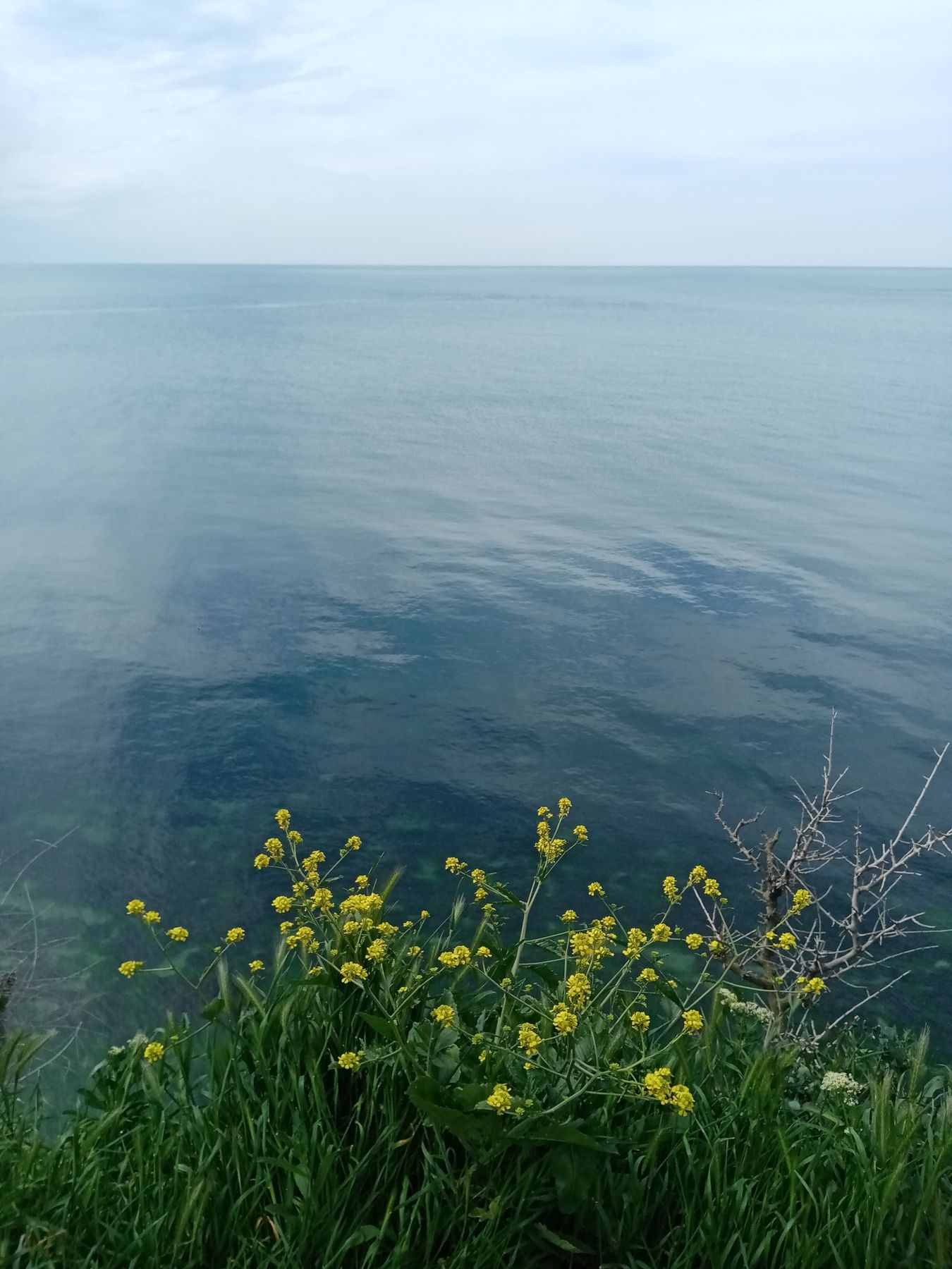 Утро на море море природа