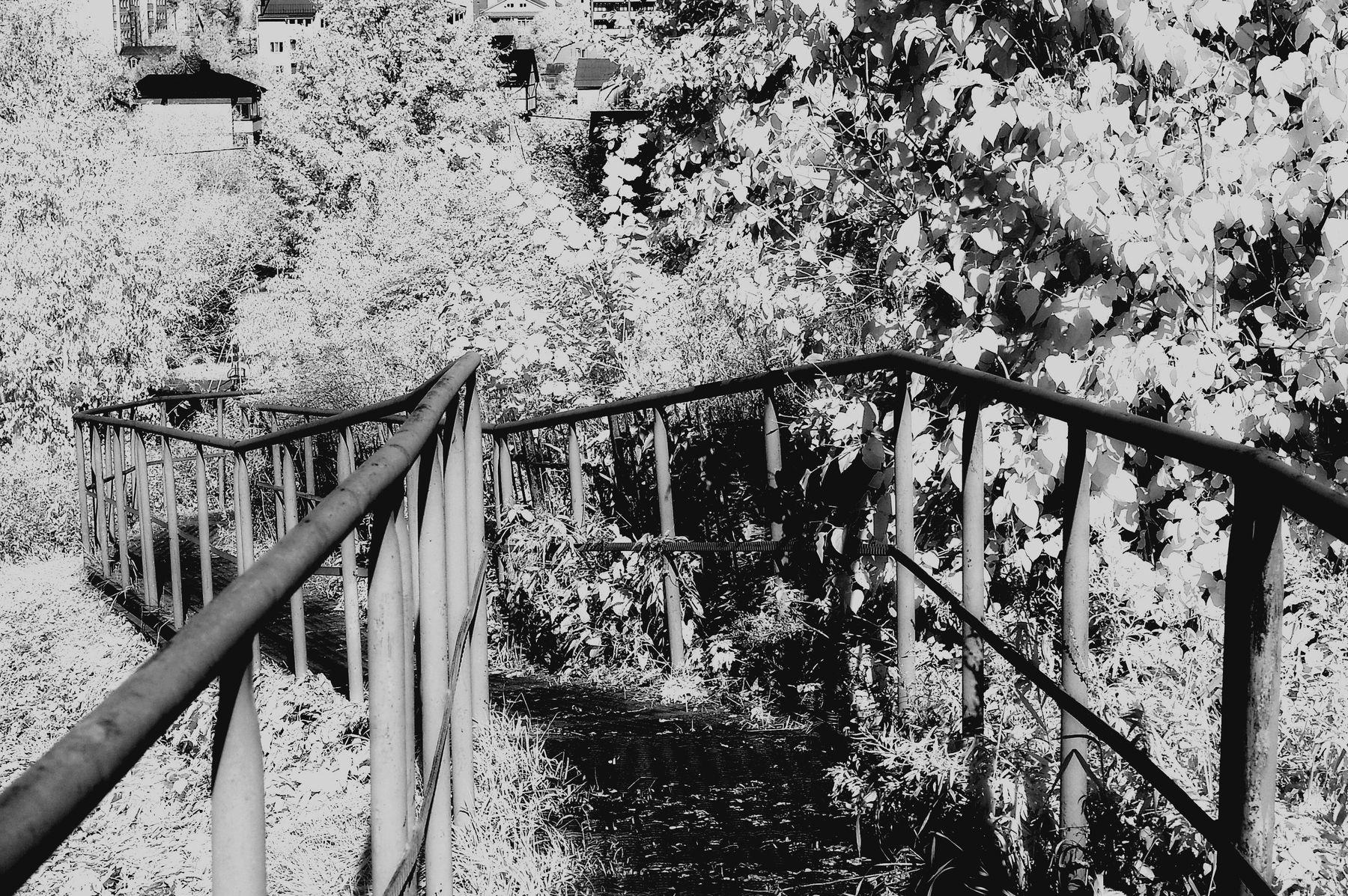 Дорога от храма с Туговой горы. Ярославль. 2020 г. от Р.Х. Монохромная инфракрасная фотография. Инфракрасная фотография