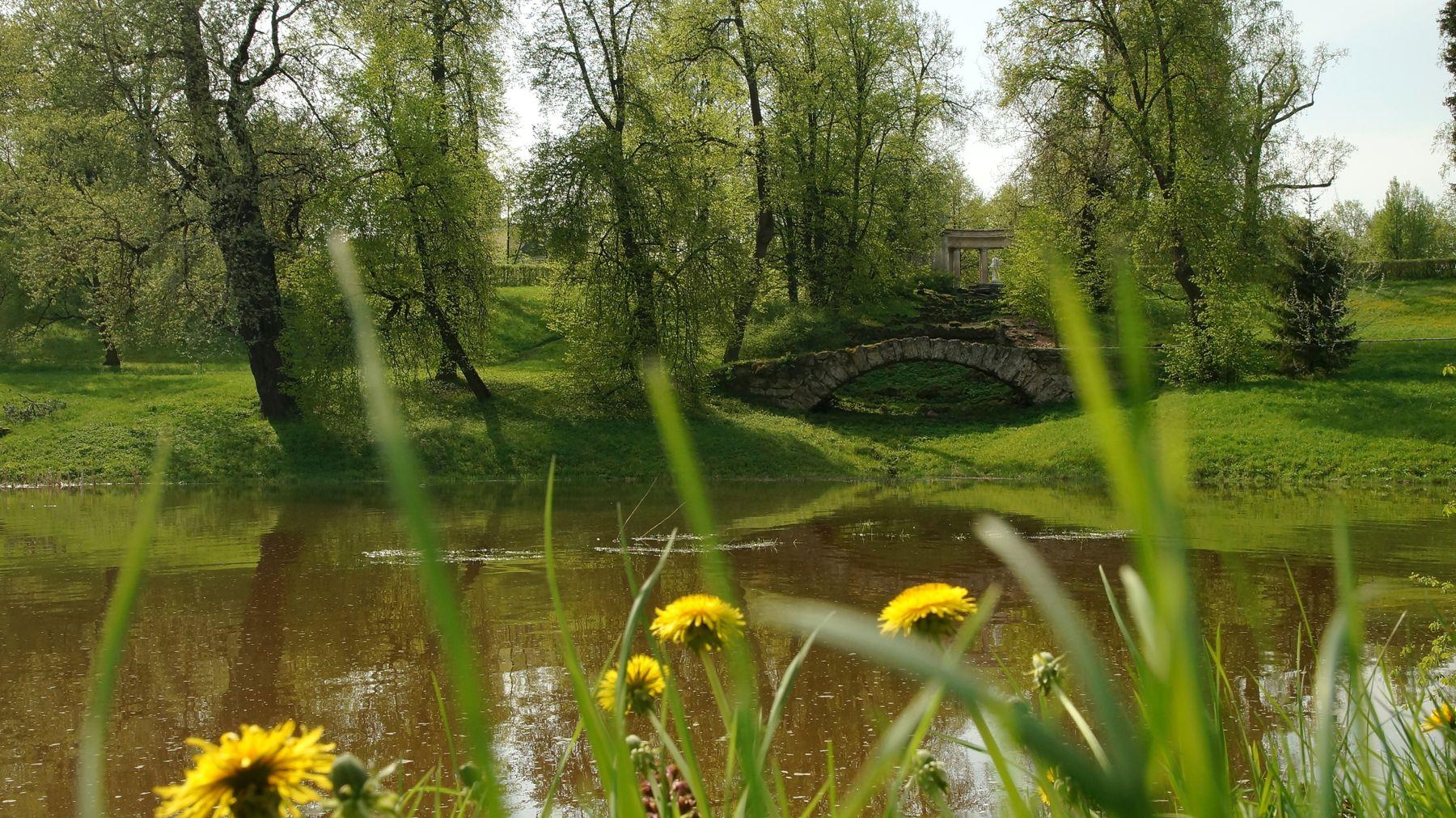 Пейзажи весеннего Павловска Павловский парк весна речка лес