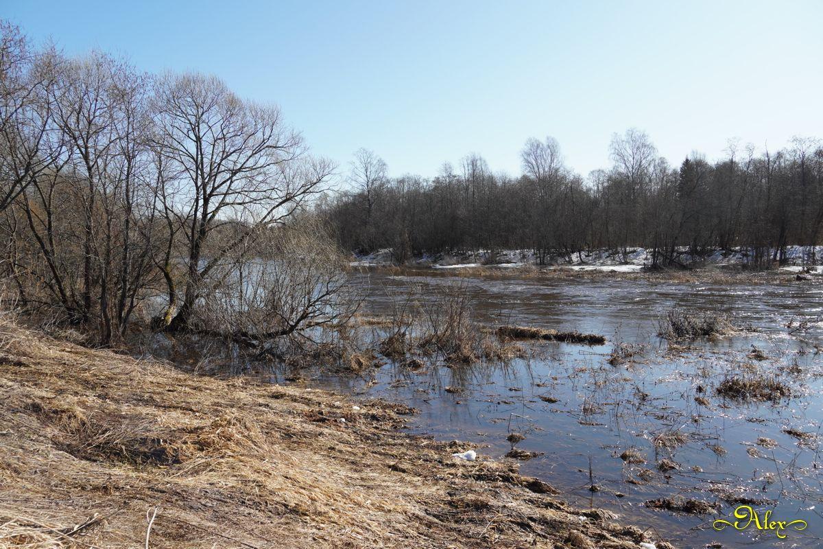 Весна март река природа пейзаж утро весна половодье