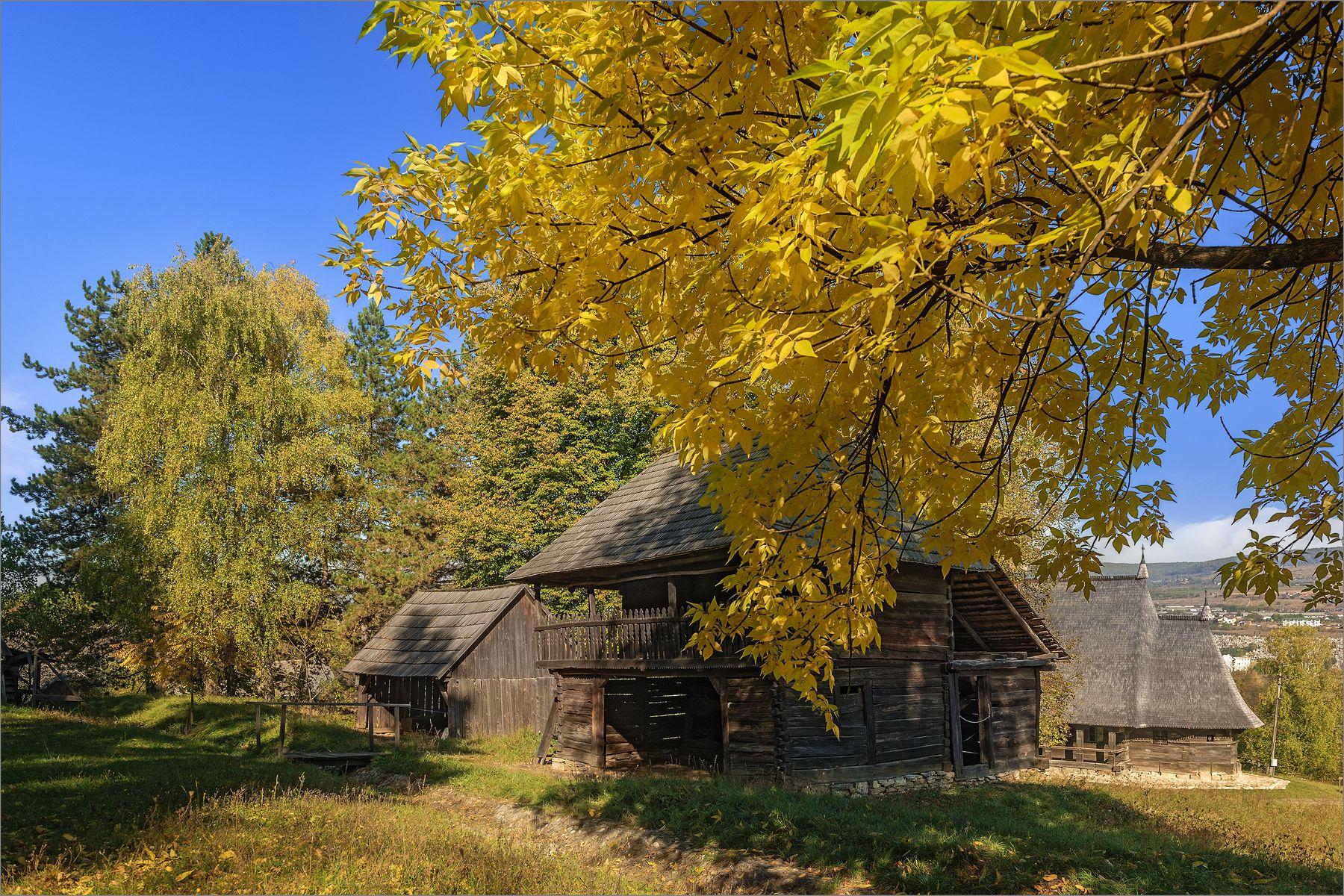 Под покровом осени листья дом