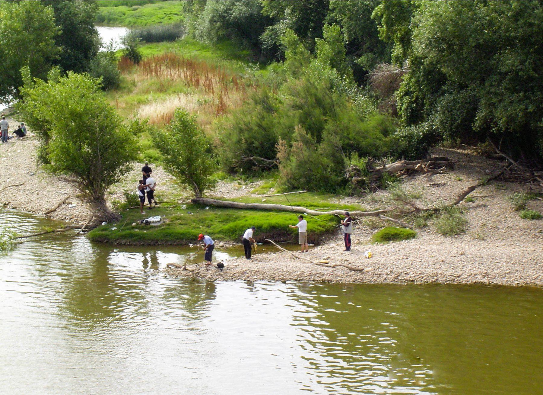 Испанские рыбаки поймали рыбу (12.06.2005)