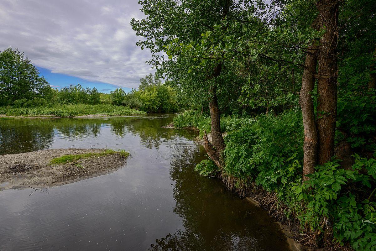 Свияга река... Лето Свияга остров