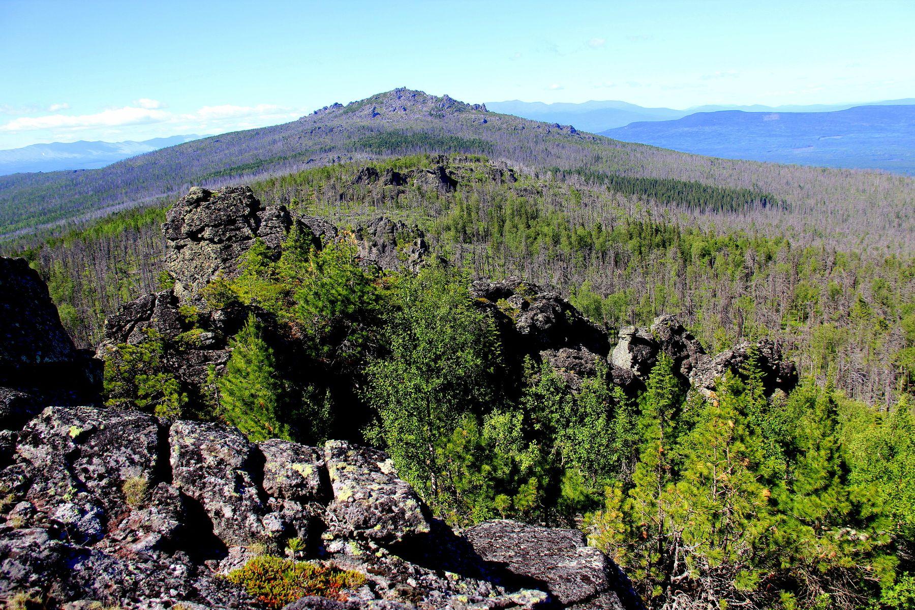 Гора Кумба горы природа деревья лес небо