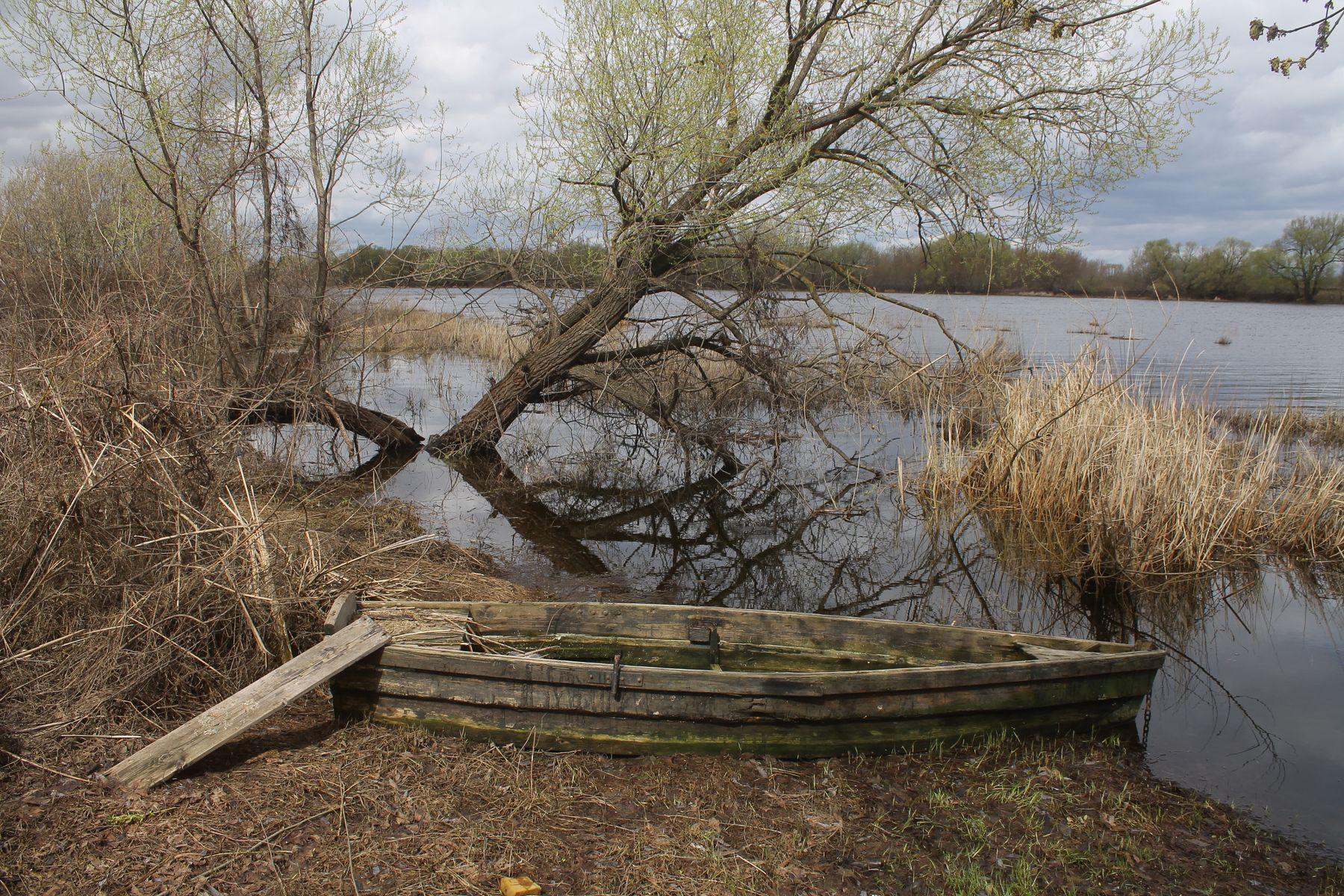 Весенний пейзаж в Луховицком районе (Московская область) Подмосковье Весна Луховицы